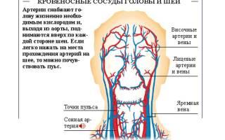 Болит голова и темнеет в глазах при беременности